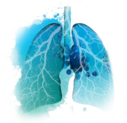 Respiration Day 2019 |  Parma, May 31st 2019